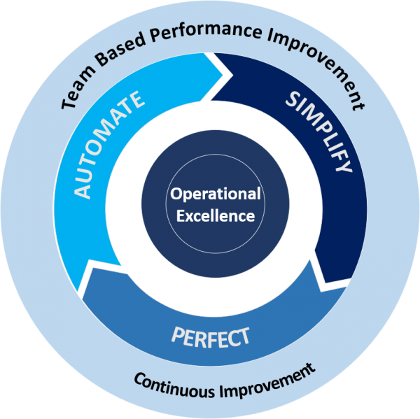 Cognitive Consulting - Team Based Performance Improvement